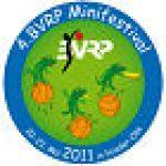mini-camp2011_mini