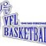 vfl basketball-logo mini